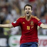 Fabregas sends Spain to the final